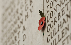 The First World War 100th anniversary tours